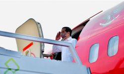 Presiden Akan Tanam Mangrove Bersama Masyarakat di Riau dan Kepri